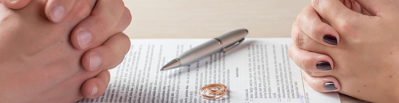 Divorce and Family Law Firm in Washington  Feldman \u0026 Lee PS